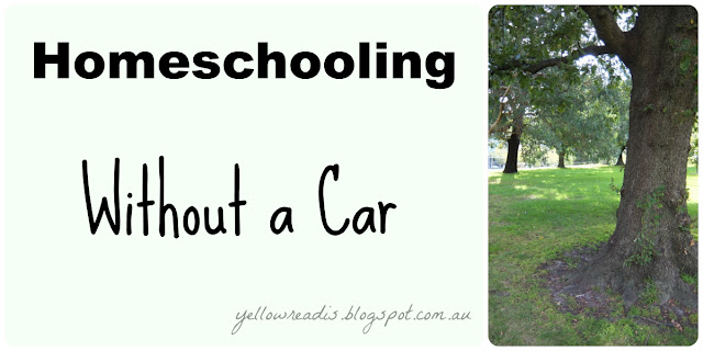 Homeschooling Without a Car - Picture of a tree