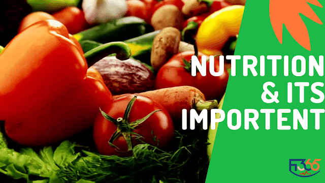 Nutrition & Its important