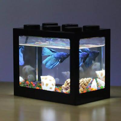 Akuarium Mini Akrilik dengan Lampu LED