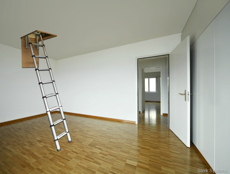 Youngman Take The Gold With New Telescopic Loft Ladder