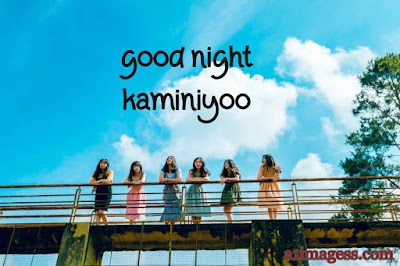 good night kaminyoo