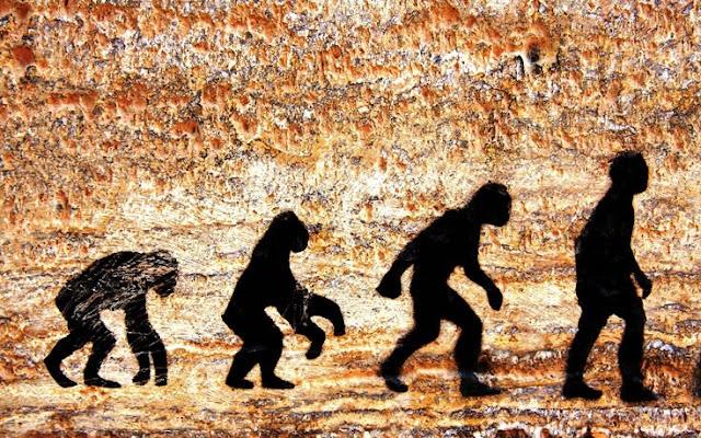 Η μάχη του Homo Sapiens με τις αρκούδες για την κατάκτηση των σπηλαίων