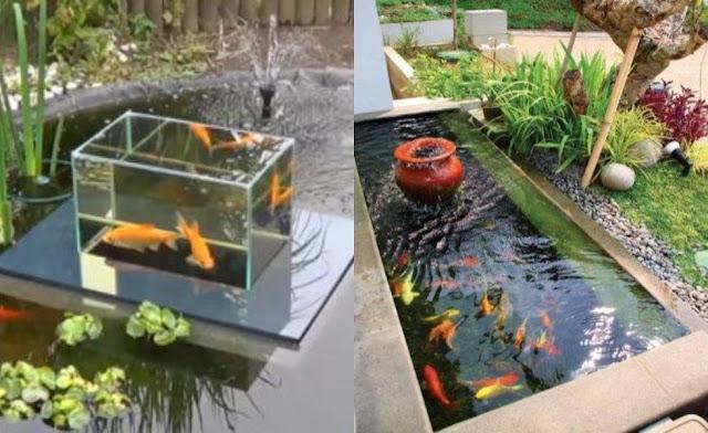 Aksesoris Kolam Ikan Koi