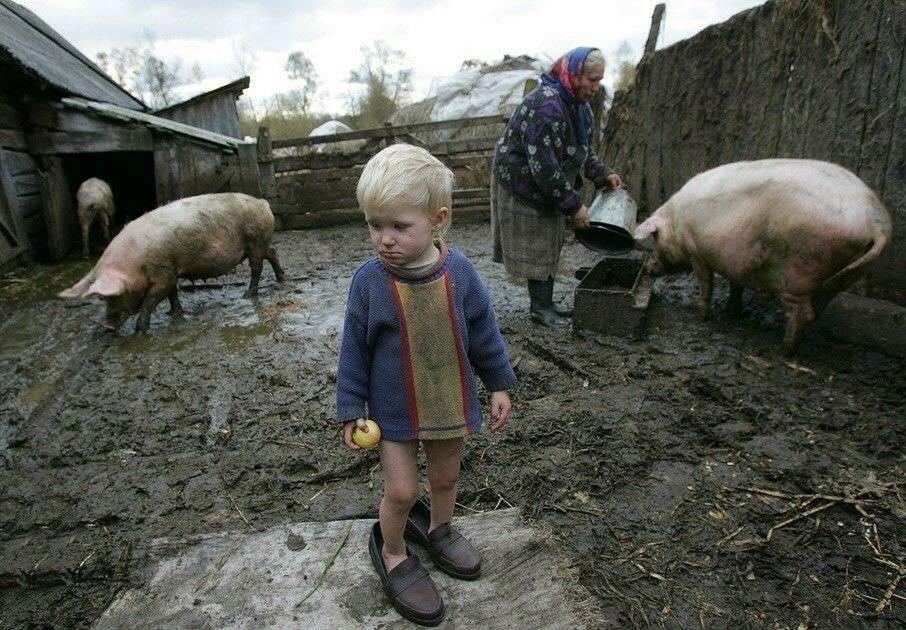 У бабушки в деревне