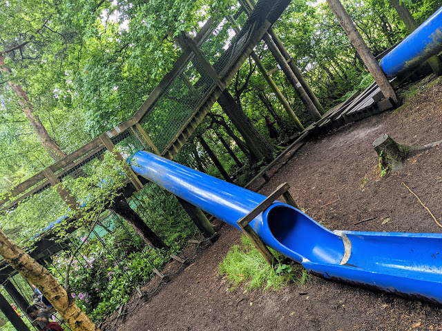 Broom House Farm Forest Adventure Review