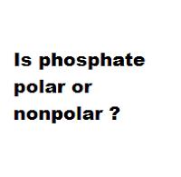 Is phosphate polar or nonpolar ?