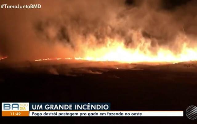 Incêndio destruiu uma fazenda de 300 hectares que fica em uma uma reserva ambiental (Foto: Divulgação/TV Oeste)