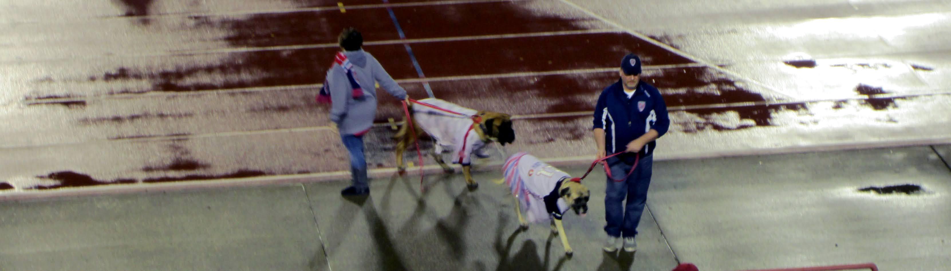 Indy Eleven's mascots, Victorio and Victoria