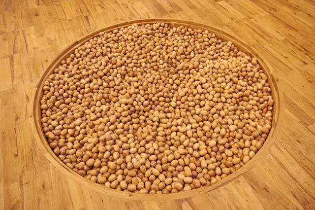 circle in wooden floor filled with wooden stones