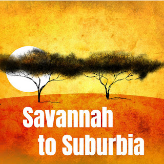 Savannah To Suburbia - South Sudanese Australian Stories