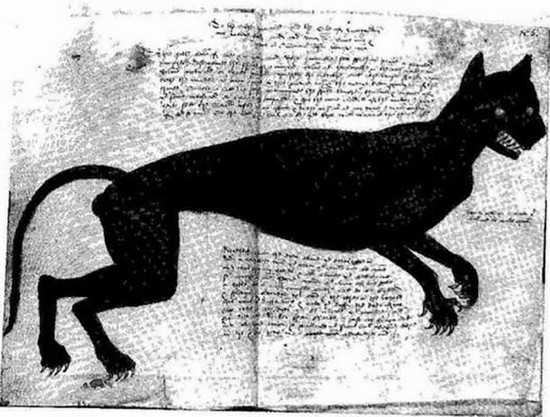 Agnes Bowker (nata nel 1540) era una domestica inglese e la presunta madre di un gatto nel 1569. Il suo processo fece scalpore in tutta l'Inghilterra. Il quadro originale era di Anthony Anderson e il gatto era rosso.