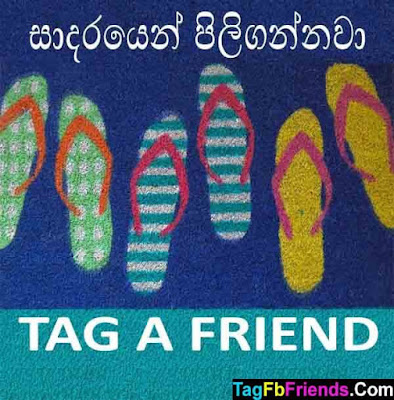 Welcome in Sinhala language