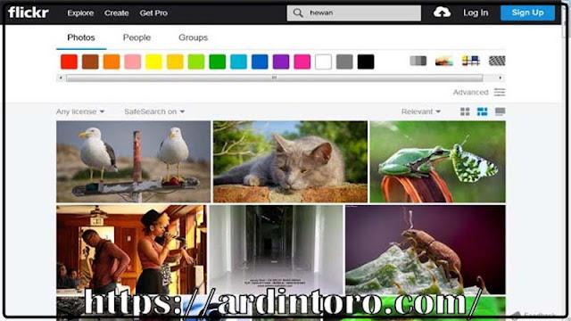 Mencari Gambar Gratis di Internet