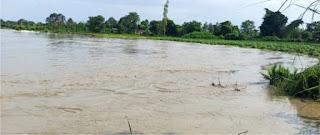 शारदा उफनाई, कई गांवों में घुसा बाढ़ का पानी  | #NayaSaberaNetwork