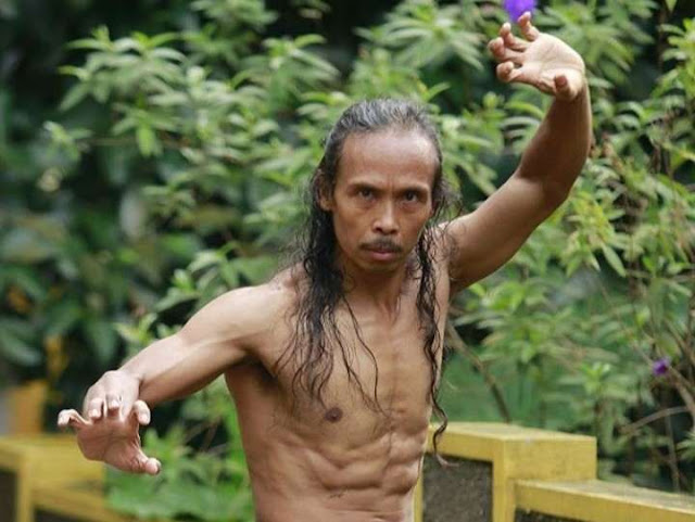 Aktor Indonesia yang berkarir di Hollywood
