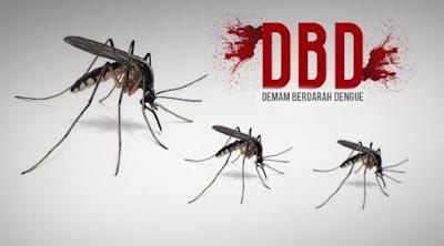 Cara Praktis untuk Mencegah Demam Berdarah  Cara Praktis untuk Mecegah Demam Berdarah / DBD