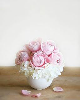 احلى صور ورود و صور زهور 2018 Best Photo Rose Flower