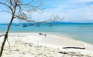 Keindahan Pantai Plengkung Wisata Paling Populer