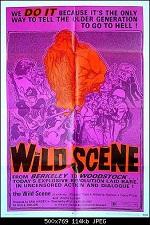 The Wild Scene 1970