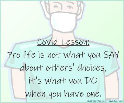 Covid Lesson | Graphic designed by and property of www.BakingInATornado.con | #MyGraphics #Coronavirus