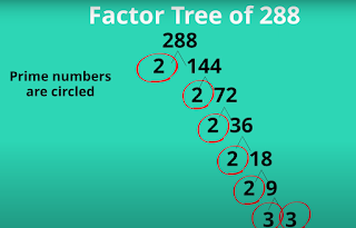 factor tree 288
