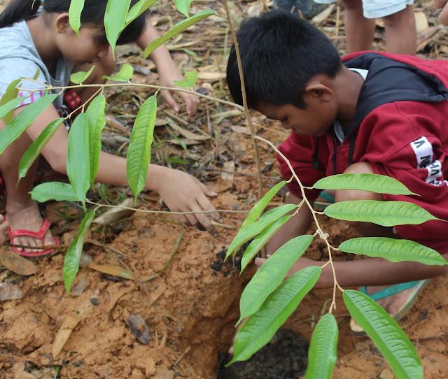 Peduli Jantung Borneo Bambo Foundation