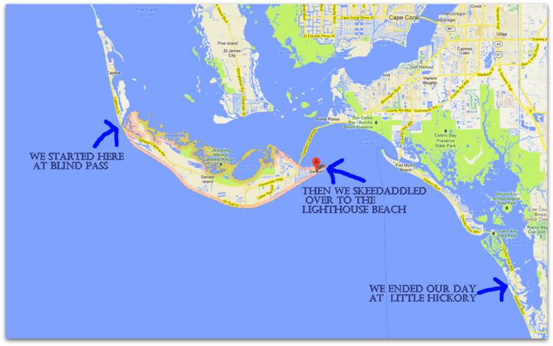 Sanibel Island Map: The Essential Beachcomber: Minus Low Tide (part 2