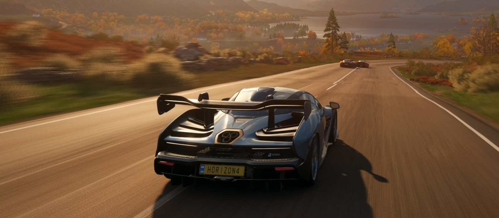 How to set up the steering wheel in Forza Horizon 4. What to do if the game does not see the steering wheel