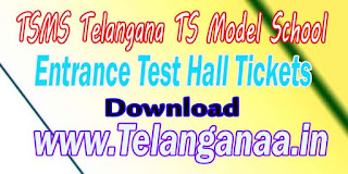 TSMS Telangana TS Model School 7th Class Entrance Test Hall Tickets Download