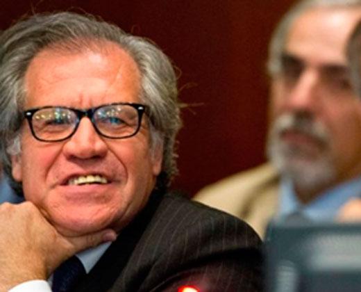 Por qué la OEA no sometió a votación si activar o no la Carta Democrática para tratar el caso de Venezuela