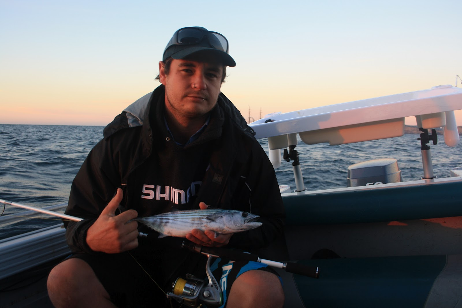 fishing wedding cakes sydney harbour the fish cure sydney harbour kingfish hunt 14292