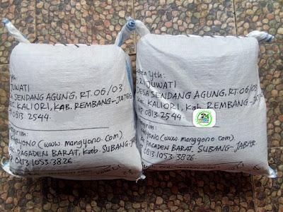 Benih padi yang dibeli   SRI JUWATI Rembang, Jateng.  (Setelah packing karung).