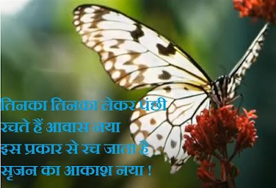 Tinka Tinka Lekar Panchi | तिनका तिनका लेकर पंछी