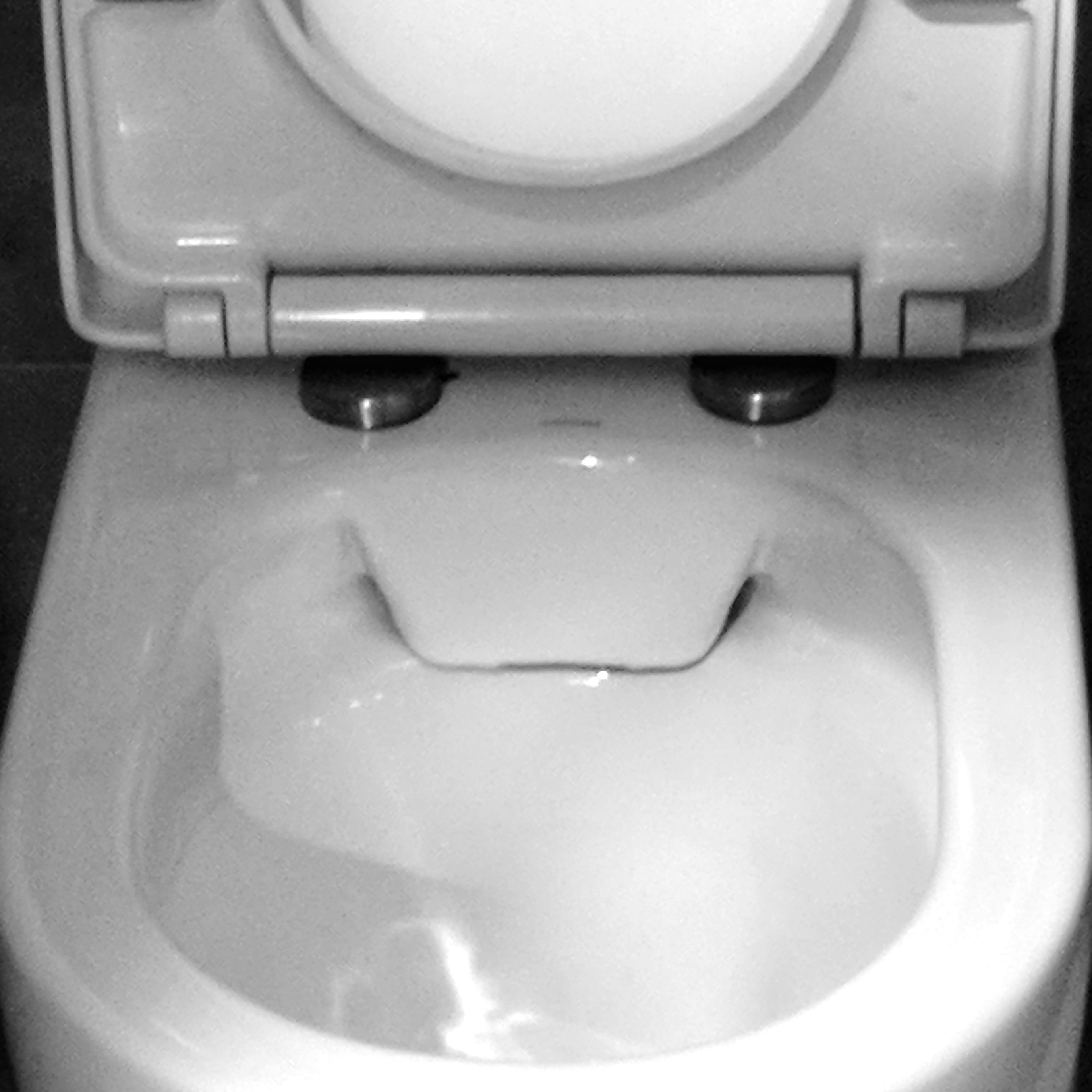 Happy face toilet