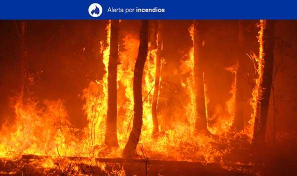 Gran Canaria en alerta por riesgo de incendios forestales desde el jueves, 25 de julio