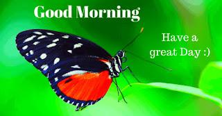 Latest New Good Morning images hd 2020 Beautiful Good Morning pics 2020