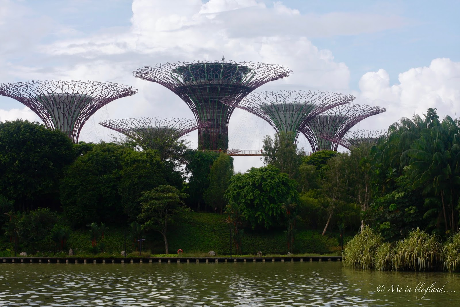 so i ve done an entire blog post on the gardens by the bay i also did two individual posts on previous floral displays namely the tulip mania and blossom