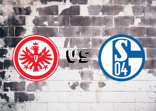 Eintracht Frankfurt vs Schalke 04  Resumen