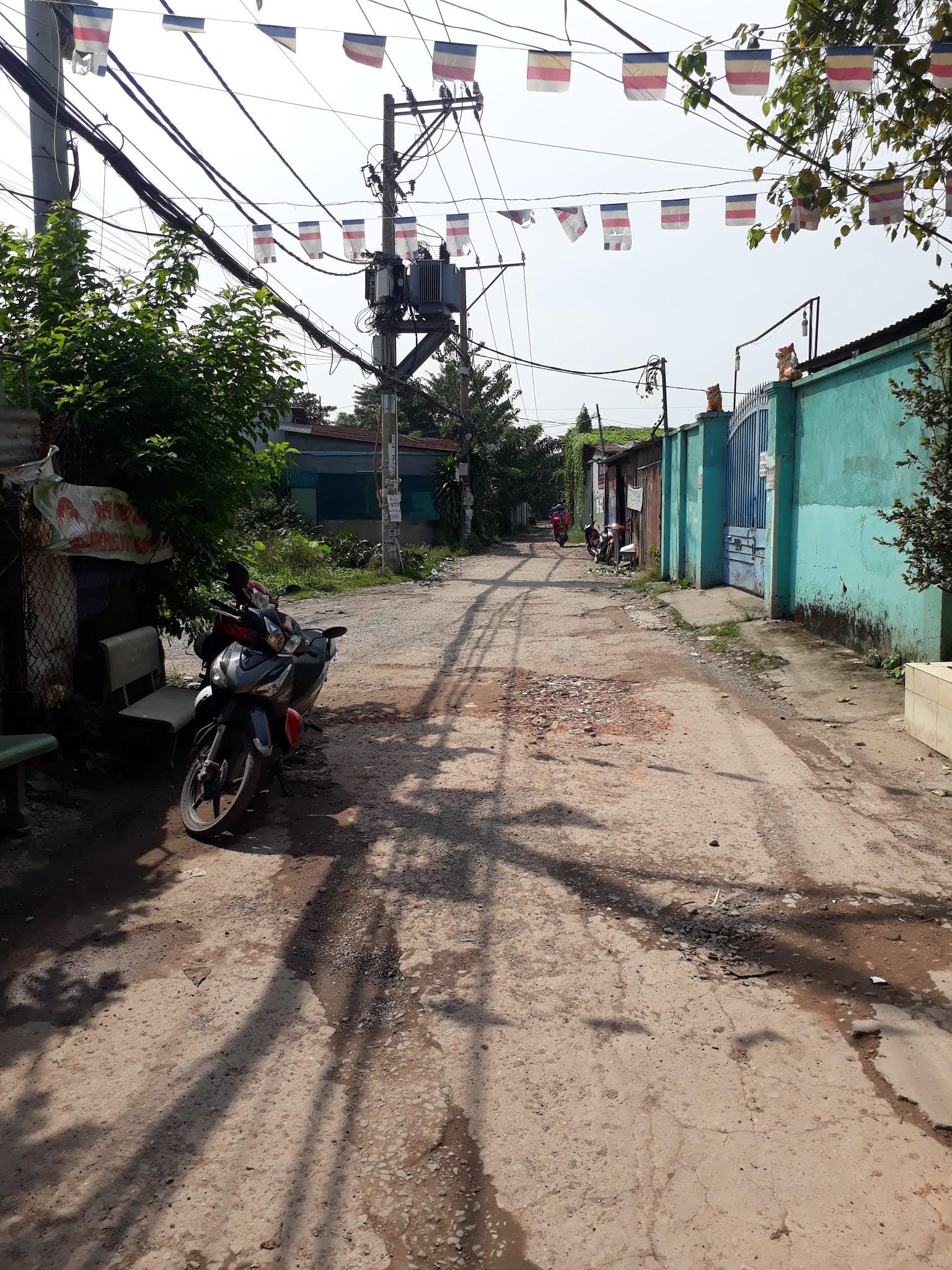 Bán 2 căn nhà Ấp 1 xã Bình Hưng huyện Bình Chánh giá rẻ