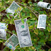 """OPINION!! The Quote """"Money Doesn't Grow On Trees"""" Is Not Entirely True – Money Do Grow On Trees (See How)"""