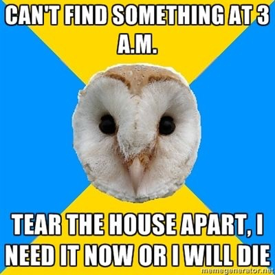 bipolar owl no sleep