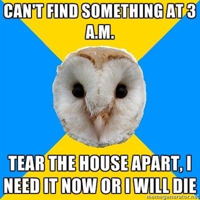 bipolar owl no sleep