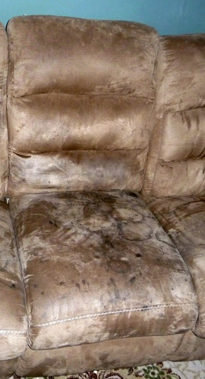 An Alternative Way To Clean A Microfiber Couch Gigglebox Tells