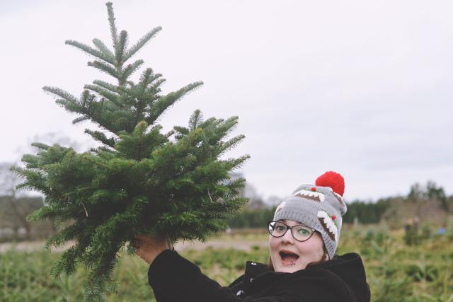 Baby Christmas tree