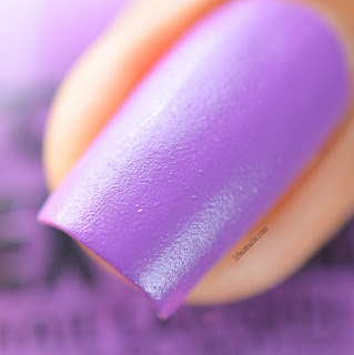 Probelle Beauty Textured Purple