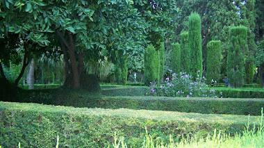 Esconderse en el Jardín de Monforte