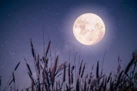 Magia księżyca letniego.