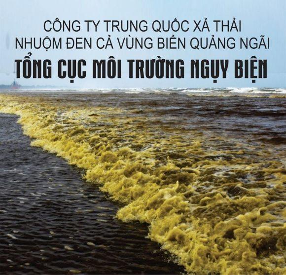 Công ty T.Q 'phá hủy môi trường' cả vùng biển Quảng Ngãi, Tổng cục Môi trường nói không gây hại