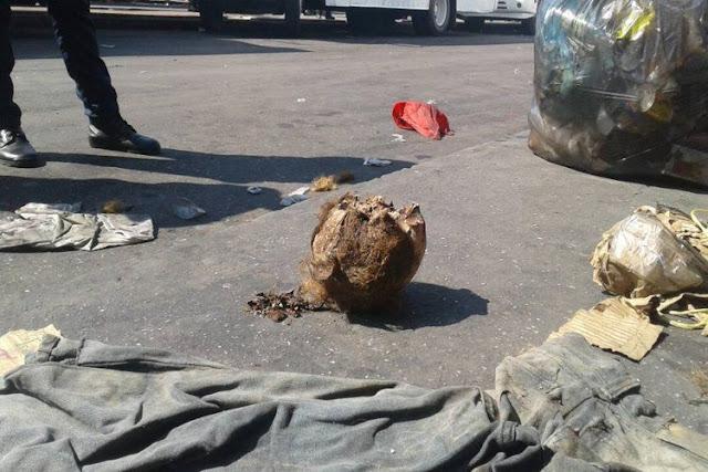 Encuentran una cabeza humana en el Terminal de Barquisimeto