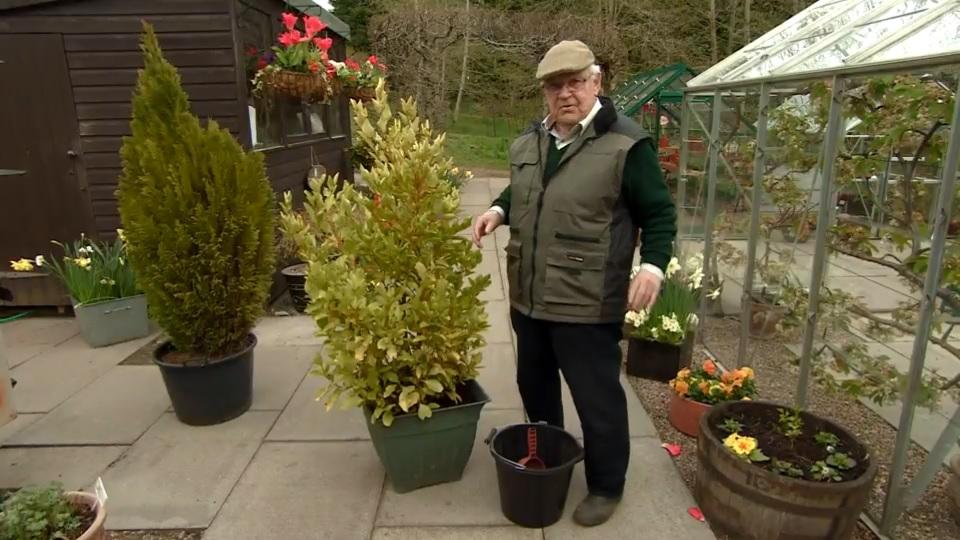 The Beechgrove Garden Ep 5 2017 Gardening And Cooking